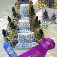 Nature Cake  This is my entry for the birthday category at the SC 2006 state fair. I won first place and sweepstake award (which is equivalent to best...