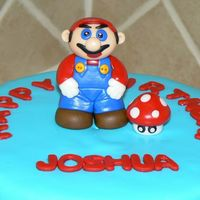 Super Mario Brothers This was a fun little figure to make. It was made out of fondant.