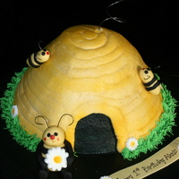 Alexis's Bee Hive For a little girl whose nickname was bumble bee. Met her through our (Icing Smiles Inc.) partnership with Ronald McDonald House. She was...