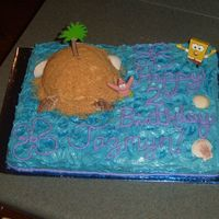 Sponge Bob  I made this birthday cake for a little girl who is turning 2. I made the island from 1/2 of a ball cake pan, iced it and put crushed...