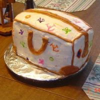 Purse Cake I decided at the last minute to try my hand at a purse cake, I should of waited another minute and undeciced it.