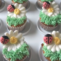 Lady Bug And Daisy Cupcakes these were made for my preschool class. royal icing flowers and bugs, buttercream grass, vanilla WASC cake