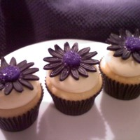 Daisy Cupcakes !!! WASC cupcakes iced in BC with fondant Daisy :) For a bridal shower. Told that the future bride loved them, which makes it all worth while....