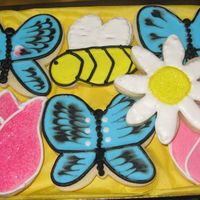 Spring I made this box of cookies for a dear friend that came by to visit me. They are NFSC with RI. TFL