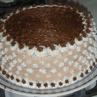 First Cake   Ok, I know how amateurish this cake looks. But, after all, it is my first one.