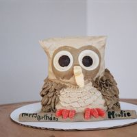 Hootie Owl Cake Had a client ask for an Owl themed cake for her nephew All BC decorated except eyes - white choc. wafers with choc wafer pupilsThanks for...