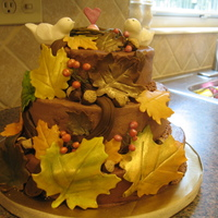 Fall Baby Shower This was a practice cake i did for a baby shower that will be in November. I was pretty happy with it....but there are definitely things I...