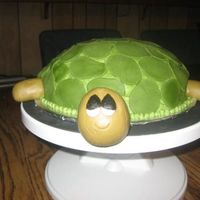 "Turtle Turtle I used a 9"" round and carved a dome shape. I decorated in Buttercream and used fondant accents."