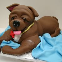 My Little Puppy   Poundcake covered with fondantI just love my cake!! :)