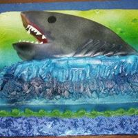 Shark! 2d shark on a 9x13 buttercream iced sheet cake. Shark covered in fondant and airbrushed.