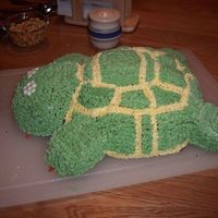 Graduation Tortoise Cake  Many thanks to srmaxwell for the inspiration of this cake. This is the very first cake that I attempted to decorate. My husband is...