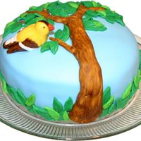Bird In A Tree   MM Fondant Cake.