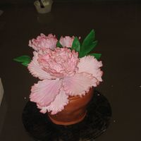 Flower Pot this flower pot cake was made for my mom for mommy's day...she loved it..choc with choc buttercream.. what do u guys think? thanks for...