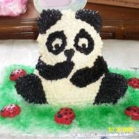 Panda Bear Cake When my sister brought home her daughter from China I made this 100% edible Panda Bear cake with edible lady bugs. It was a huge success...