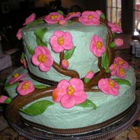 Cherry Blossoms  I made this cake for my daughter on her 10th birthday. She loves all things asian. I used real buttercream....which accounts for the saggy...