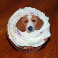 Beagle Cupcake   buttercream swirl, purchased sugar beagle