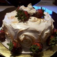 Vanilla_Mantecada.jpg  This is a Vanilla Mantecada Cake. My two young daughters helped dip the strawberries in the chocolate. The chocolate was a little to thick...
