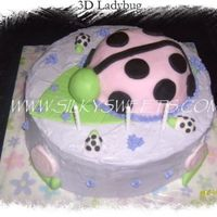 "3D Ladybug  3D ladybug cake for my daughter's 3rd birthday. Double layered 12"" chocolate cake, raspberry filling. Fondant covered ladybug..."