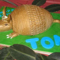 Armadillo For a fan of Steel Magnolias on his 30th.