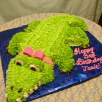 Alligator I did this cake because of a little girls favorite book. Her mom got me several pics of alligator cakes and this is my version . The head...