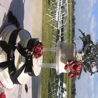 Wedding Nov 2010 Wedding Cake for outdoor wedding, White cake, Bavarain Cream filing, buttercream icing, Crimson Red gumpaste roses dusted with pearl, satin...