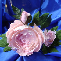 Pink Peony & Buds Pink peonies made with two different sized catalyea orchid cutters. I've been begging to learn how to do these flowers. My wonderful...