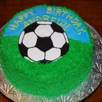 Soccer Ball Cake Vanilla cake, vanilla buttercream and royal icing ball (ball is actually sitting up and out of the cake)