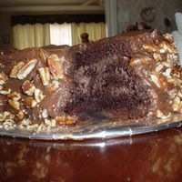 "Disaster Cake   Chocolate cake with chocolate filling and chocolate icing. I also call this the ""mudslide"" haha"