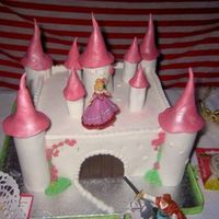 My First Castle   the girl just want a castle with the princess and the prince in a horse.....the rest was up to me....