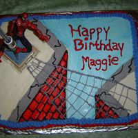 Spiderman 1/2 sheet cake, buttercream icing... toy spiderman and pole. This was my first cake for someone other than family.