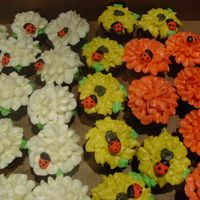 Flower/ladybug Cupcakes white cupcakes are gluten free, artificial ing. free and other free stuff chocolate cupcakes. The rest are reg. chocolate cake with royal...