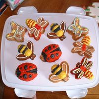 "Backyard Bugs I made these cakes using a new pan from WS called ""Backyard Bug"". they were a lot of fun to make, once I got the hang of the..."