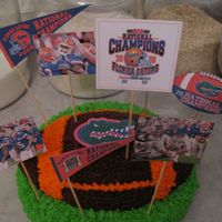 Florida Gator Football Cake I made this cake for my husbands birthday today. I used a football cake pan for the first time. The icing is chocolate and regular...