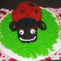 Lady Bug Cake This is my 1st attempt at the lady bug cake done for my daughters 1st b-day party....She looks kinda mean, but I think she's kinda...
