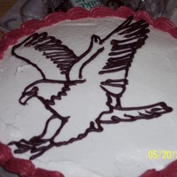 Eagle Mascot I downloaded their pic of the mascot and made a chocolate outline for the cake.