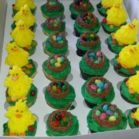 Chicks And Bird Nest Cupcakes I made these for my sons class for Easter. They were vanilla and chocolate fudge. The kids loved them.