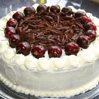 Black Forrest Cake With Fresh Cherries