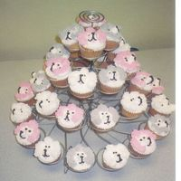 Poodle Cupcakes These are cupcakes I made for my granddaughter Kindergarten class.