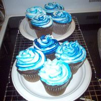 Cupcakes Pratice two-tones Cupcakes with white and blue frosting.