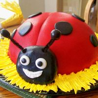 Ladybug Lover Birthday  I got the idea for this of here somewhere. Its the Wilton Soccer Ball pan, MMF, head is rice krispie treat I shaped then covered in MMF!...