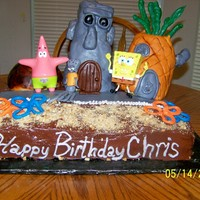 Sponge Bob Bikini Bottom  This is pretty much and 11x15 marble fudge cake which I torted' and put Fudge Filling in middle; Chocolate Icing is canned Icing:...