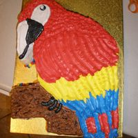 Parrot Birthday A Parrot Birthday cake for an 8 year old. Challenging with the skinny beak area. All buttercream. Chocolate and White Chocolate -- 4 inch...
