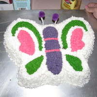Butterfly Cakes These are the two butterfly cakes I made for my daughter's birthday.