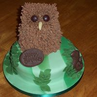 Eric The Owl Cake  Eric is made of rice krispie/marshmallow mix shaped with wet hands covered in chocolate b/cream with Cadbury flakes stuck in for feathers...