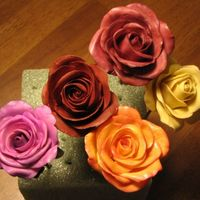 Gumpaste Roses I'm still trying to perfect GP roses. These are my latest. What do you think?TFLSandra