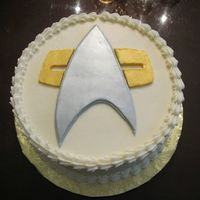 Star Trek Groom's Cake