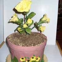 Flower Pot Flower pot is Chocolate cake with vanilla BCC, roses are gum paste.
