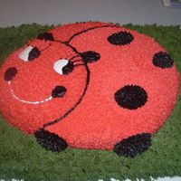 Ladybug My very first character/theme cake EVER!!! I am so proud of it. What do you all think??