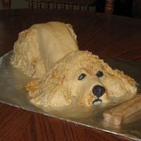 Cocker Spaniel This is a sculpted cake covered in MMF. It was made as a birthday cake for my son and is supposed to be our dog, Buster.