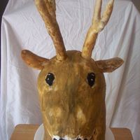 Deer Head Cake  I made this deer head cake (his name is Buckie) for my brother's 45 birthday. He is a hunter and he loved it. It was a 4 layer...